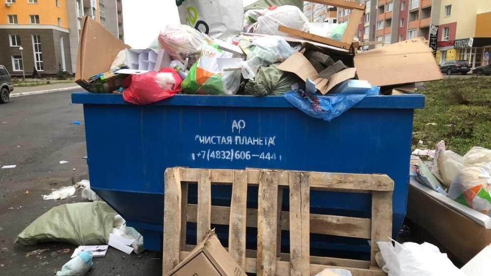В Брянске устроили истерику из-за мусорного контейнера