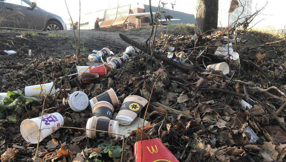 В Брянске попросили «Макдоналдс» умерить свинство посетителей