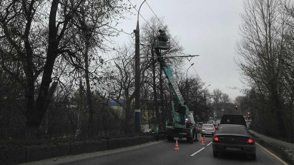 В Брянске на Красноармейской в условиях заторов спилили старые тополя