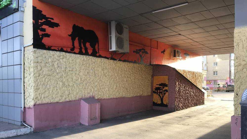 В Брянске появилась первая саванна со слонами