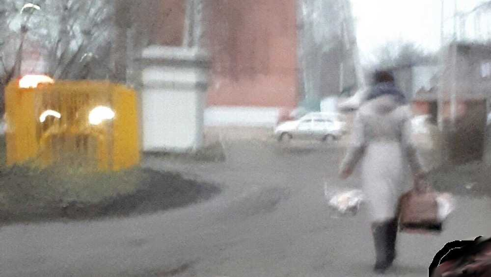 Брянцев развеселила дама с корзиной из супермаркета
