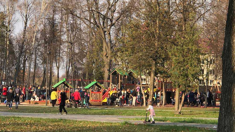 Брянцев 7 ноября пригласили на открытие обновленного Майского парка