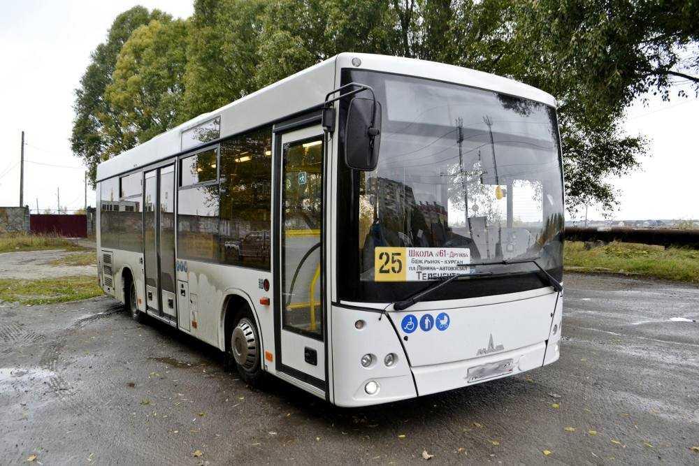 Брянцам понравились МАЗы на автобусных маршрутах