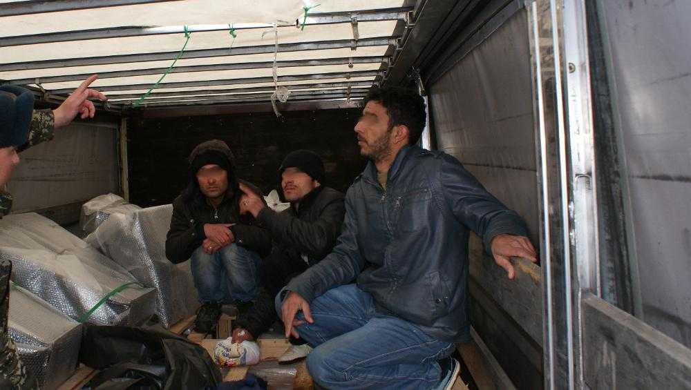 В Брянскую область тайно въехали три иракца