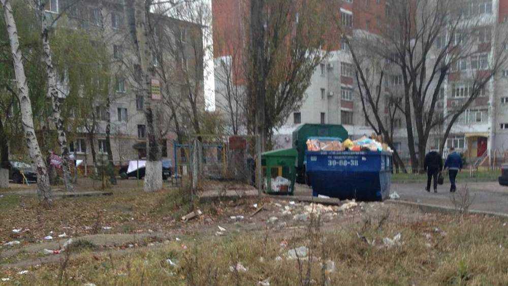 Для собак, птиц и бомжей в Брянске наступил мусорный рай