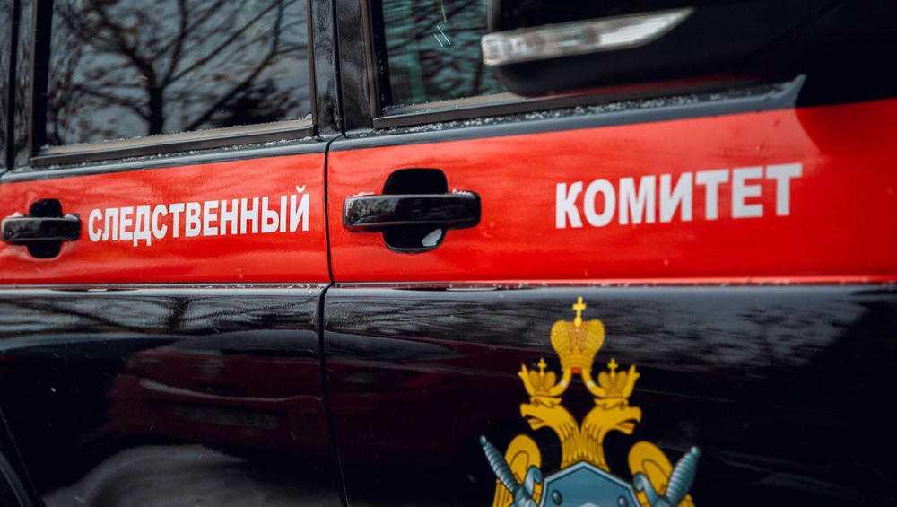 В Брянске возбуждено уголовное дело по факту гибели 12-летней девочки