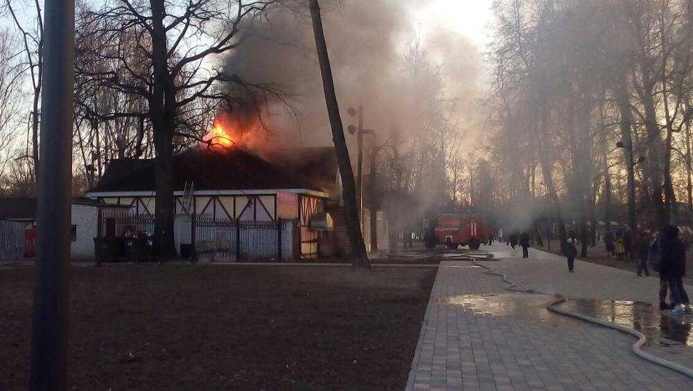 Брянский шоумен Коломейцев рассказал о пожаре в своем бывшем кафе
