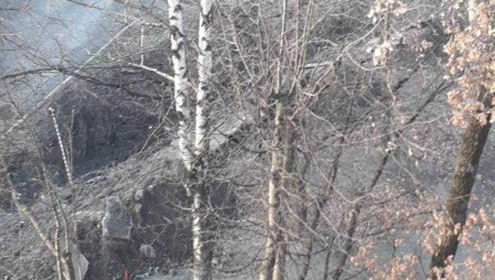 Жители Брянска потребовали вести ремонт сетей без раскопок
