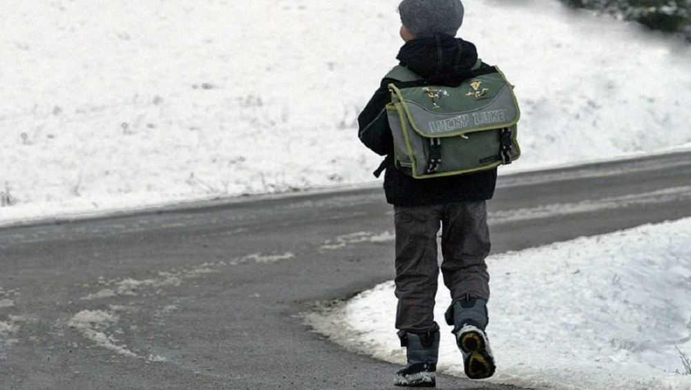 Водитель брянской маршрутки из-за наживы высадил ребенка