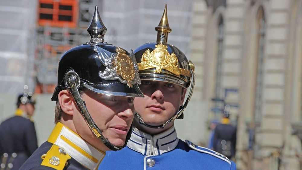 Заявление шведского политика рассмешило россиян