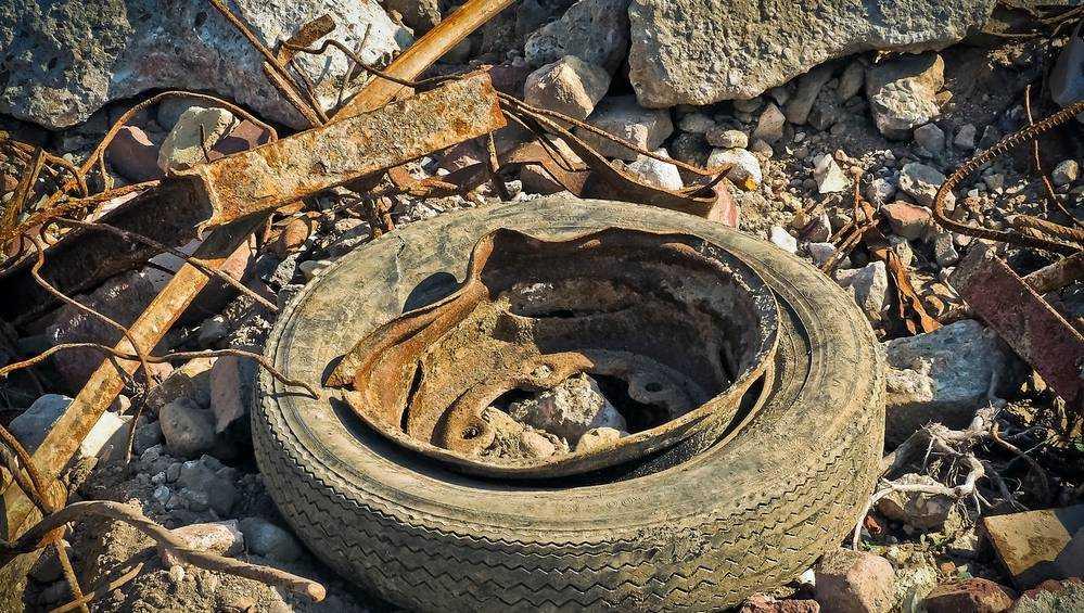 В Новозыбкове вывезенный с берега озера мусор выбросили в лесу