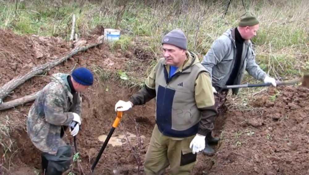 Под Смоленском обнаружили останки 86 бойцов Брянской дивизии