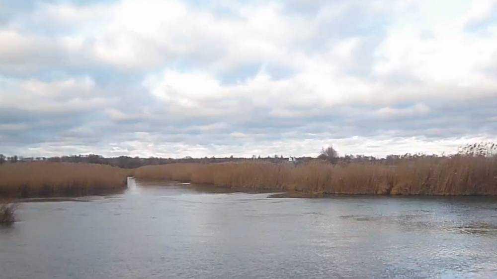 Брянцы восстали против убийства рек