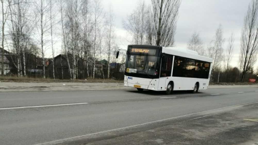 На улицы Брянска выехали новые автобусы МАЗ