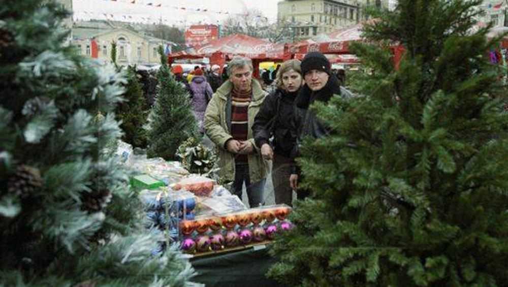 Елочные базары в Брянске начнут работать с 19 декабря