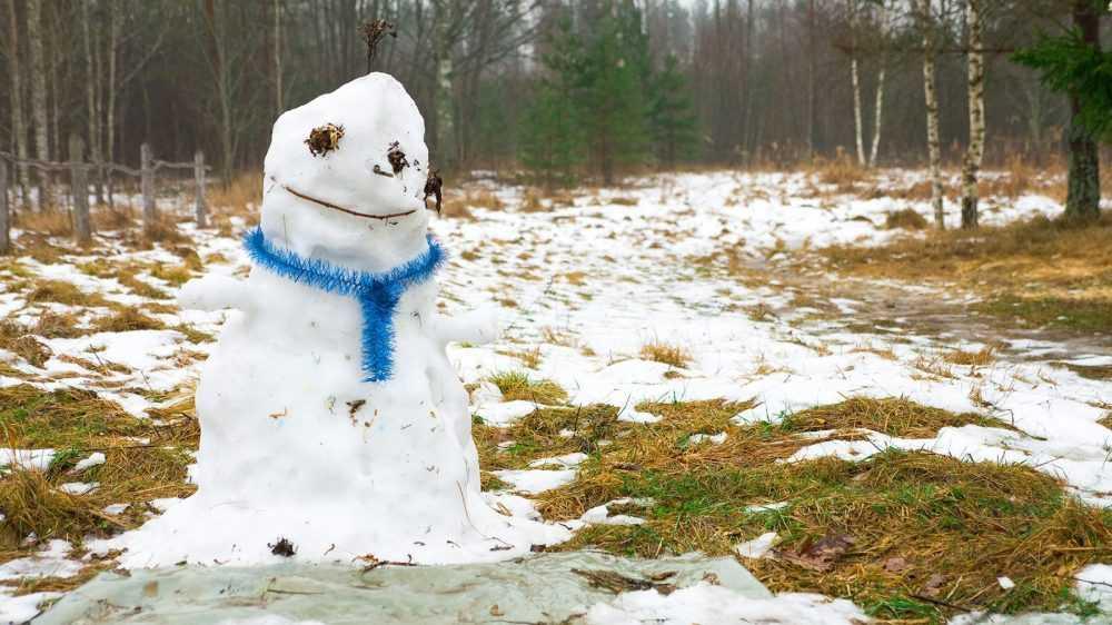 В Брянскую область 22 января придёт 2-градусное тепло