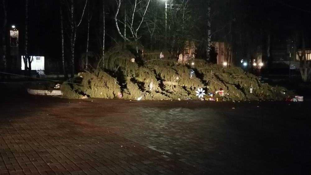 Под Брянском в Путевке рухнула новогодняя елка
