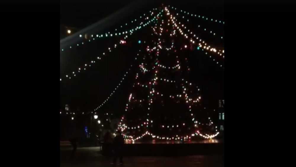 Брянцы увидели огни на главной новогодней елке города