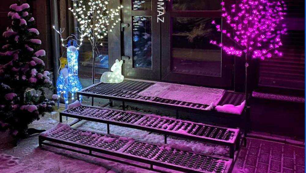 Брянский губернатор Богомаз показал новогоднюю елку в своем доме