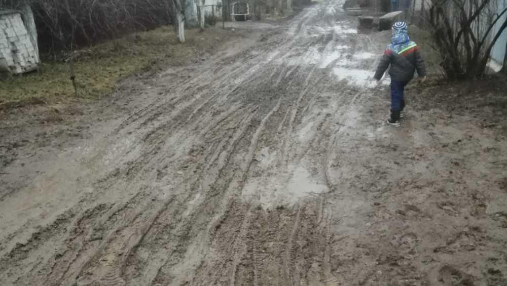Жители Выгоничей пожаловались на грязь и бездорожье