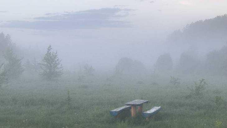 В Брянской области объявили «желтый уровень» опасности из-за тумана