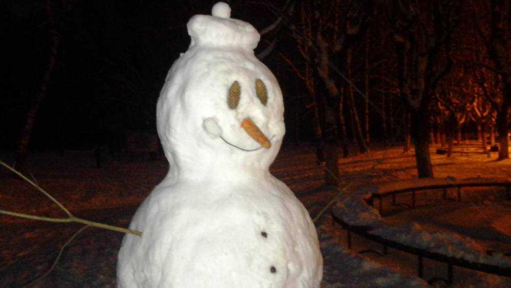 В Брянской области в понедельник пройдет снег при 2 градусах тепла
