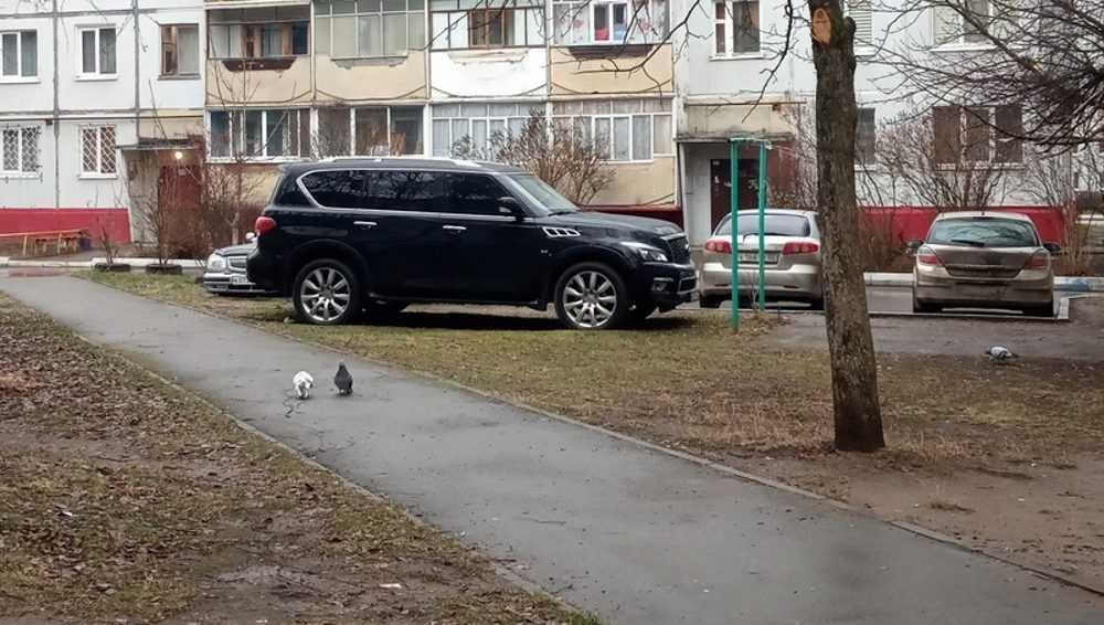 Брянцев возмутила парковка дорогого автомобиля на детской площадке