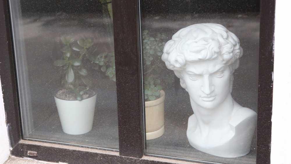 В Брянске чиновники раскритиковали кафе из-за бюста в окне
