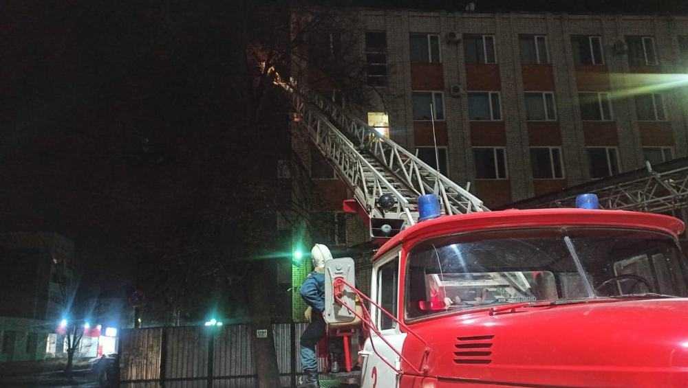 Сотрудники МЧС в Брянске сняли кота с дерева
