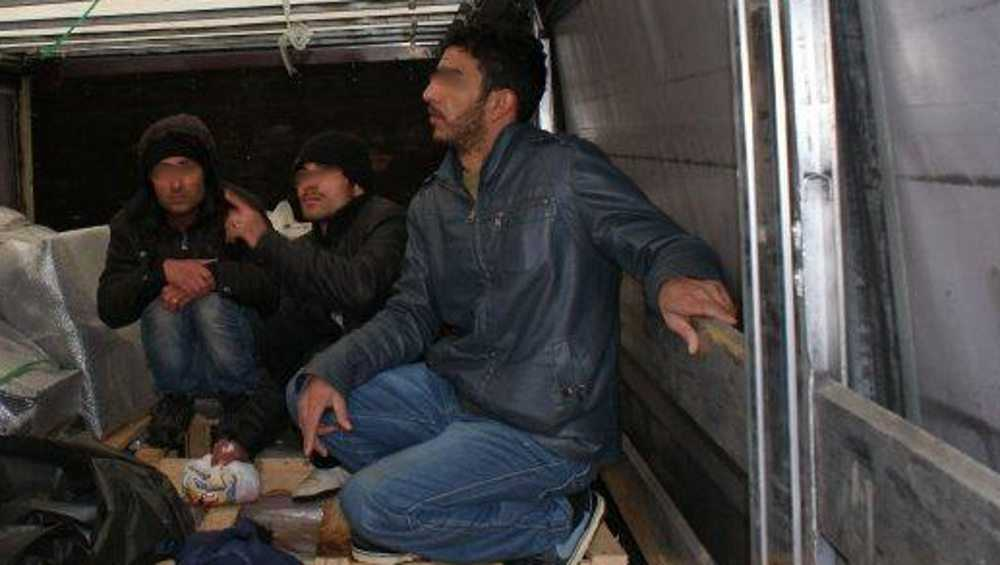 В Брянской области вынесли приговор трем нелегальным мигрантам из Ирака