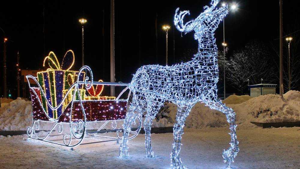 В Брянске к Новому году установят более 30 елей
