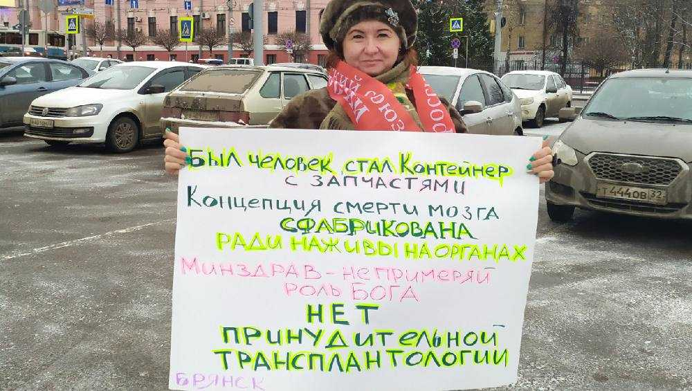 В Брянске прошли одиночные пикеты против федеральных законопроектов