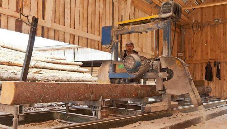 В Навле троих бизнесменов оштрафовали за беспорядок на пилорамах