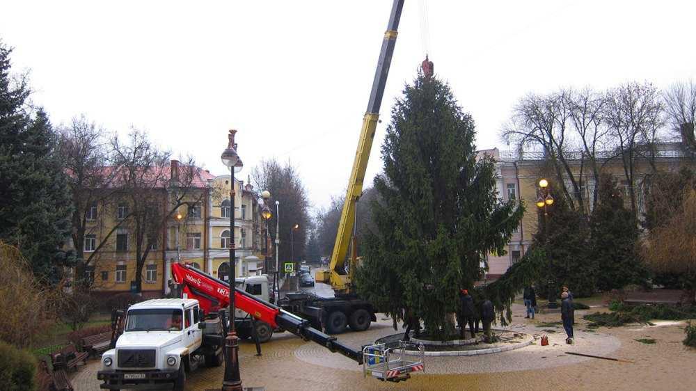 В Брянске на площади возле ТЮЗа установили новогоднюю ёлку
