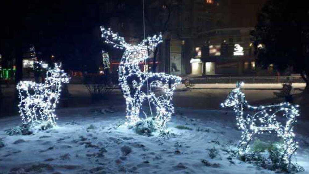 В Брянске возле автовокзала поселились персонажи новогодних сказок