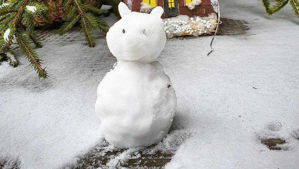 Первые снеговики у брянцев не заладились