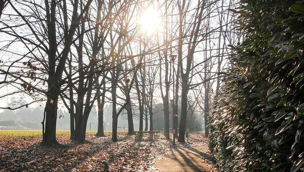В Брянске побит 25-летний температурный рекорд