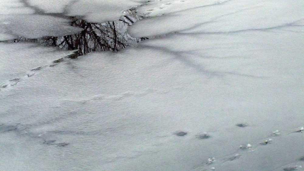 Брянцам сообщили о морозной погоде и о тонком льде на водоемах