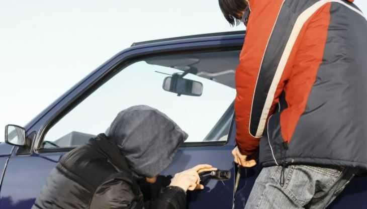 В Новозыбкове автоворы сожгли похищенный ВАЗ с документами владельца
