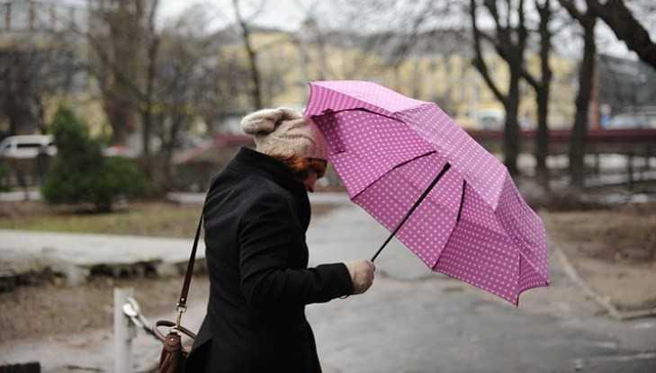 В Брянской области объявили экстренное предупреждение из-за шквального ветра