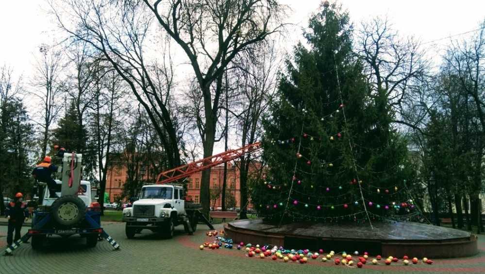 В Круглом сквере Брянска начали наряжать главную новогоднюю ёлку