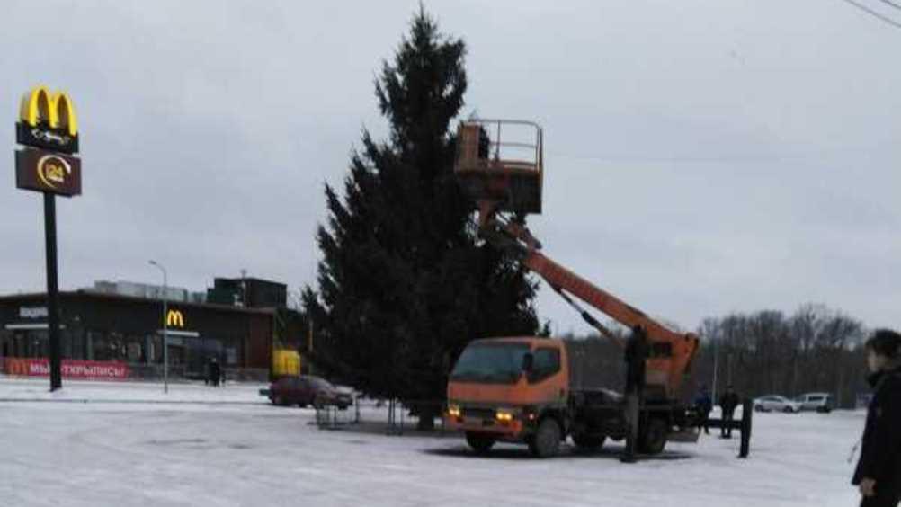 В Бежицком районе Брянска возле «Линии» появилась новогодняя ёлка