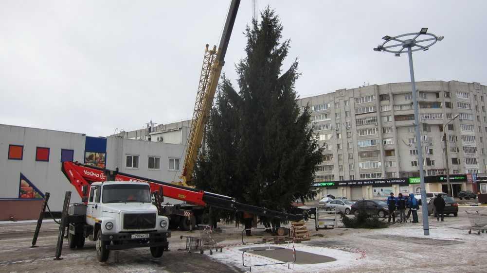 В Брянске подростки атаковали новогоднюю ёлку возле «Линии»