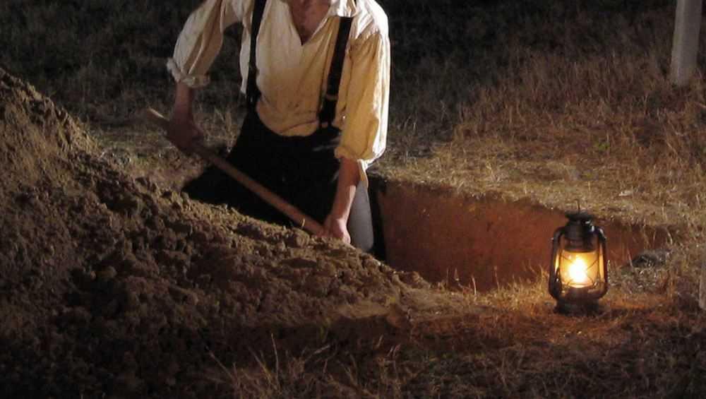 В Брянске могильщики самовольно захватили лес под захоронения