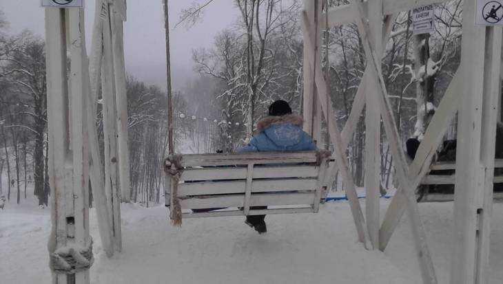 В Брянскую область придет зимняя погода