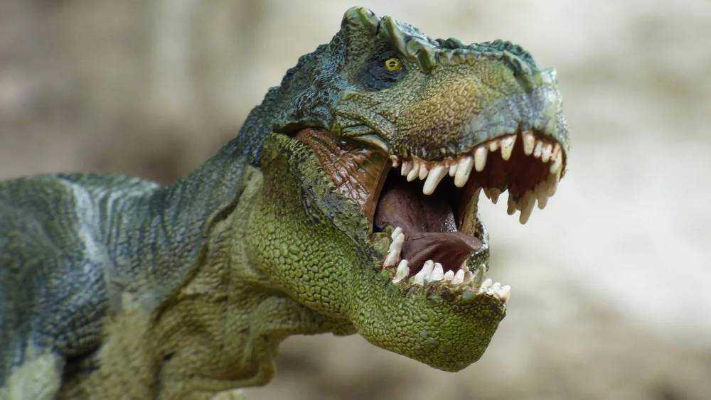 Новогоднюю ночь жители Брянска встретили с добрыми динозаврами