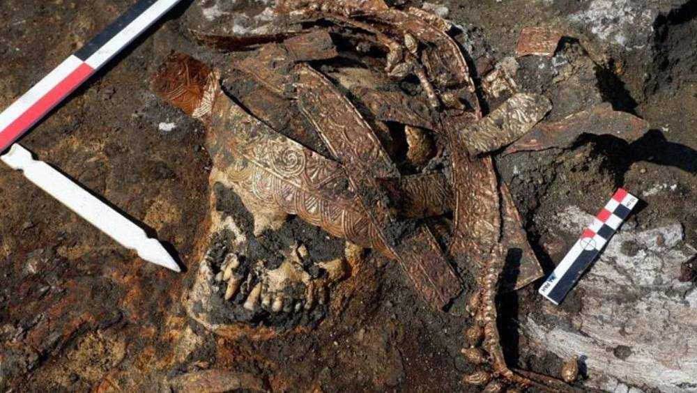 Святилище в брянском Хотылеве археологи включили в топ–10 открытий года