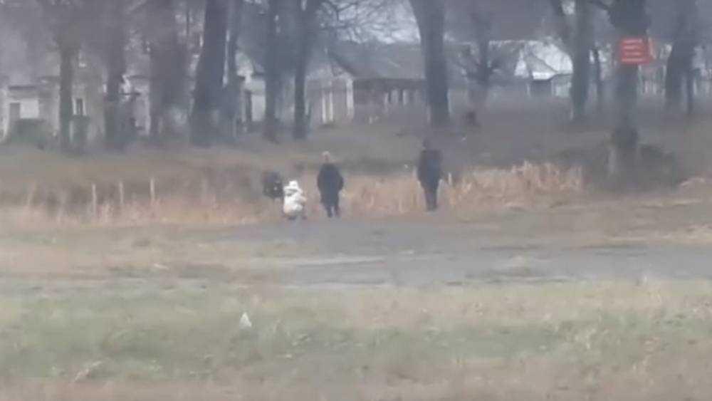 В Клинцах дети устроили опасные игры на льду в заброшенном парке