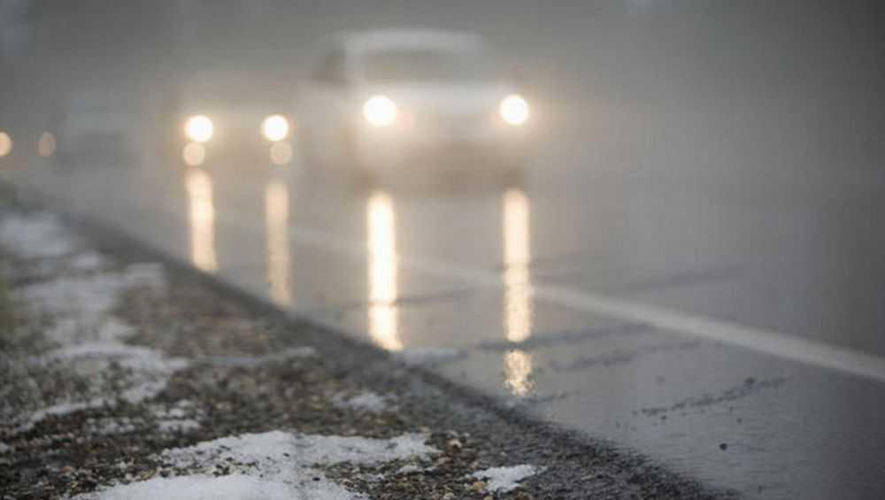 Брянских водителей предупредили о тумане и гололедице 15 января