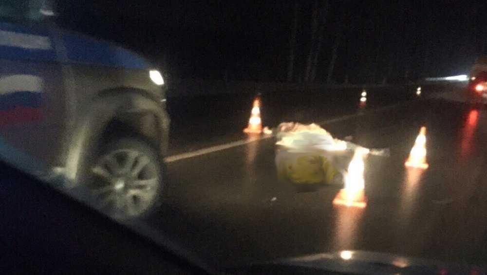 На брянской трассе автобус переехал лежавшего на дороге мужчину